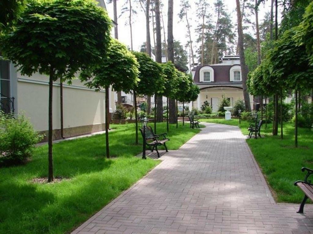 Озеленение частного дома фото