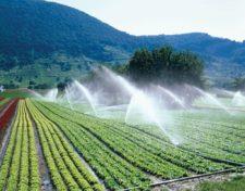Полив сельскохозяйственный
