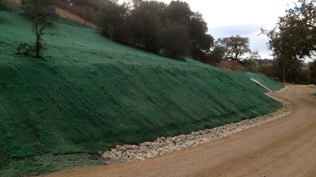 посев газона на склоне в воронеже